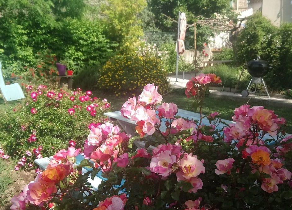 Voyage chamanique au jardin